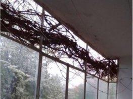 Продава Тристаен Апартамент  София Младост 2  80300 EUR